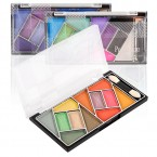 Profusion 12 Color Professional Make Up Eyeshadow