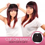 Anytime Synthetic Hair Clip-On Bang S007
