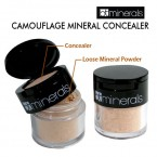 Beauty Treat Minerals Camouflage Mineral Concealer