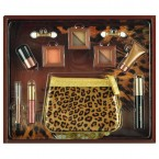 CITY COLOR 8 Bronze Beauty Bronzer Makeup Set